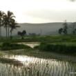 Philippines-Biliran-Island-Scenery-4