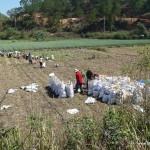 Farmers - Vietnam, Central Highlands