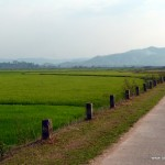 On The Way To Lak Lake - Vietnam, Central Highlands